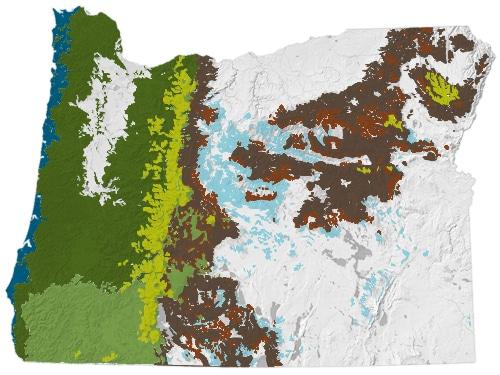 forest types map oregonforests