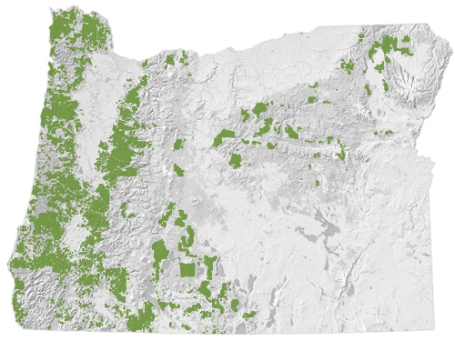 Large Private Forest Ownership Map
