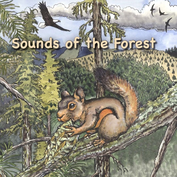 Sounds of the Forest cover