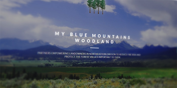 My Blue Mountains Woodland website screencap