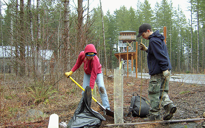 Kids replant trees at the Tillamook Forest Center